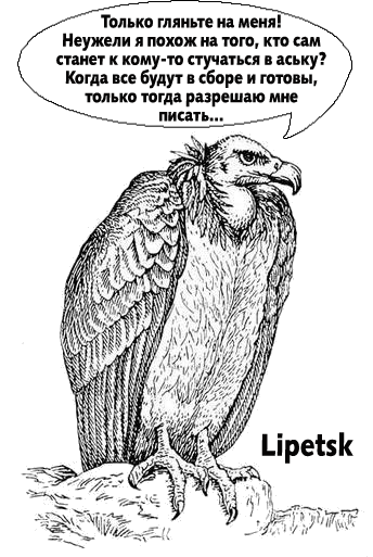 Гордость Lipetsk'а не позволяла ему самому писать напарнику и остальным.